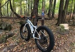 Resized Mountain Bike