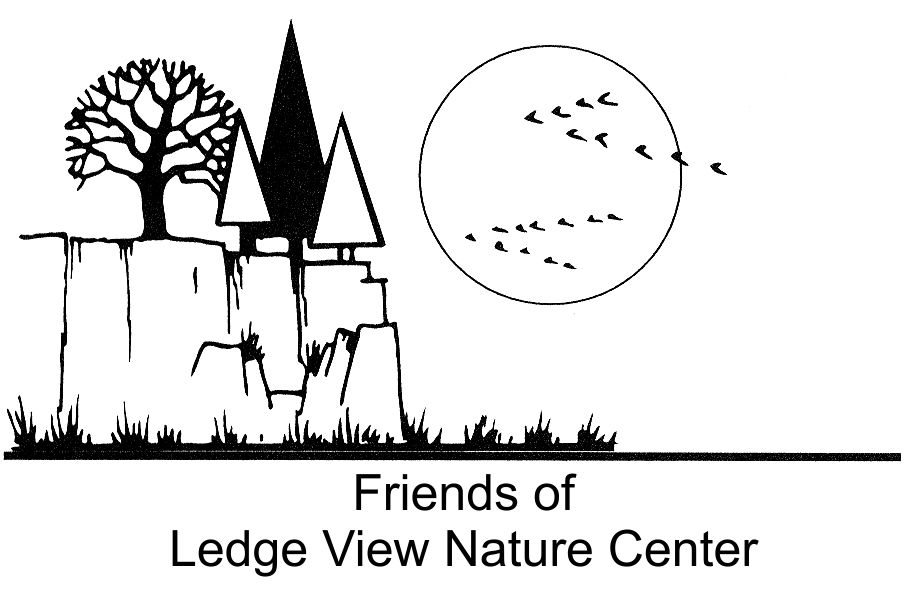 Friends of Ledge View Nature Center logo showing rocks and pine trees